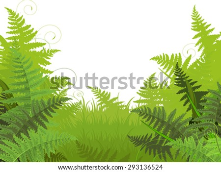Illustration of fern meadow background - stock vector
