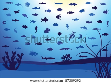 Illustration of 62 fish silhouettes in ocean or aquarium. All objects are isolated and grouped. Colors are easy to adjust. - stock vector