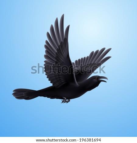Illustration of flying black raven on blue sky background - stock vector