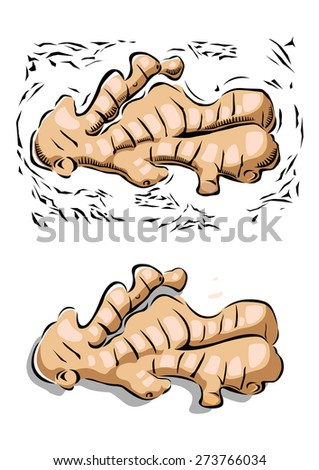 Illustration of ginger in woodcut style - stock vector