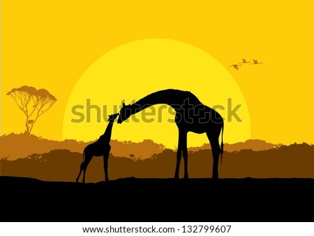 Giraffe Silhouette Stock Images Royalty Free Images