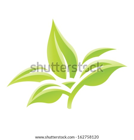 Illustration of Green Glossy Leaves Icon isolated on a white background - stock vector