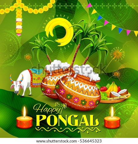 Illustration happy pongal greeting background stock vector hd illustration of happy pongal greeting background m4hsunfo