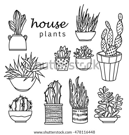 indoor home office plants royalty. illustration of houseplants indoor and office plants in potset house plant isolated home royalty