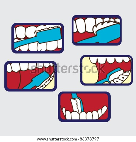 illustration of how to brush your teeth - stock vector