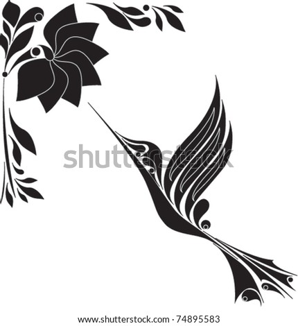 Black And White Hummingbird Drawing
