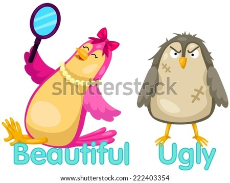 illustration of isolated cute birds with opposite words