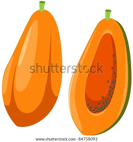 illustration of isolated papaya on white background