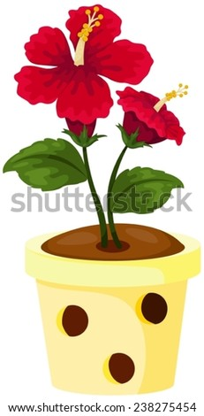 illustration of isolated red hibiscus in a pot on white - stock vector