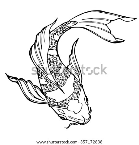 illustration of koi carp, coloring page