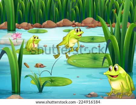 Illustration of many frogs in the pond - stock vector