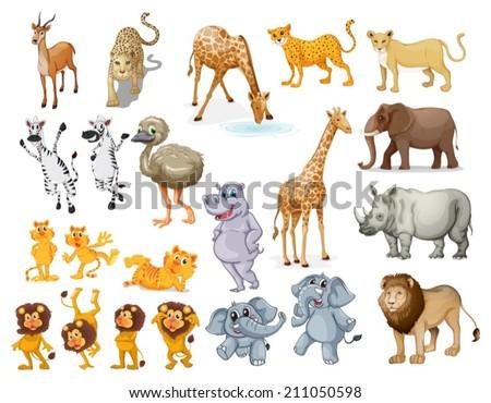 Illustration of many wild animals - stock vector