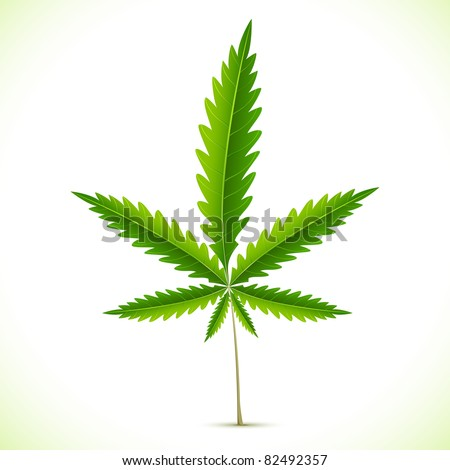 illustration of marijuana leaf on abstract background - stock vector