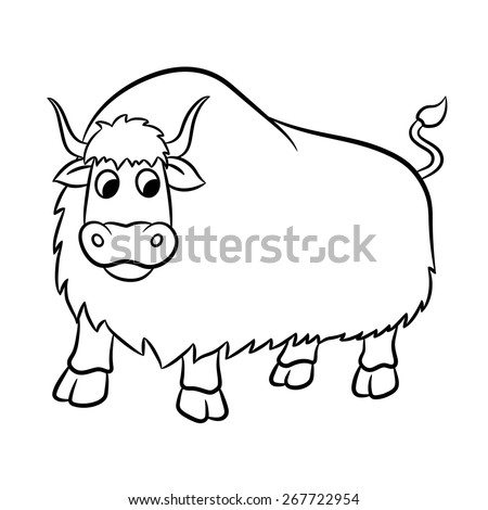 Illustration of outlined yak on a white background. Vector - stock vector