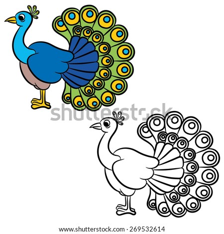 illustration of peacock bird on a white background coloring book