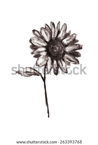 Illustration of pencil drawn flower