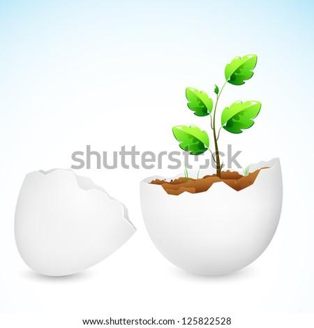 illustration of plant sapling growing in broken egg shell - stock vector