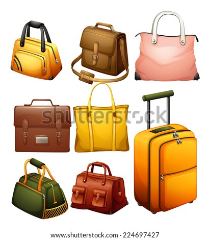 Illustration of the different bags on a white background