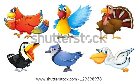 Illustration of the different types of birds on a white background - stock vector
