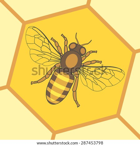 Illustration of the honey bee insect icon - stock vector