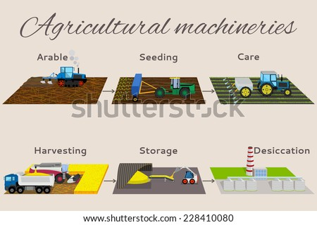 Illustration of the process of growing and harvesting crops. Infographics from 6 items: arable, seeding, care, harvesting, storege, desiccation. - stock vector