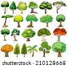 Illustration of the set of trees on a white background - stock photo