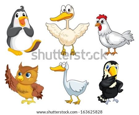 Illustration of the six different kinds of birds on a white background