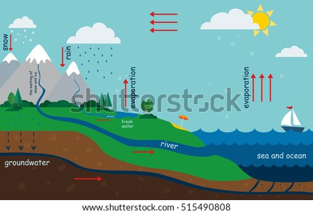 Water Cycle Diagram Stock Images, Royalty-Free Images & Vectors ...