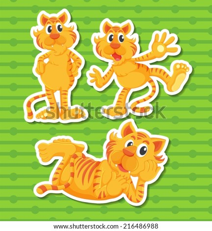 Illustration of three poses of a tiger - stock vector