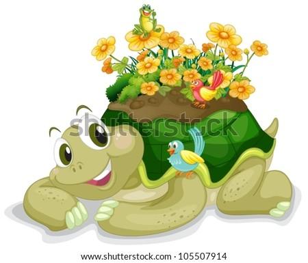 illustration of tortoise on a white background - stock vector