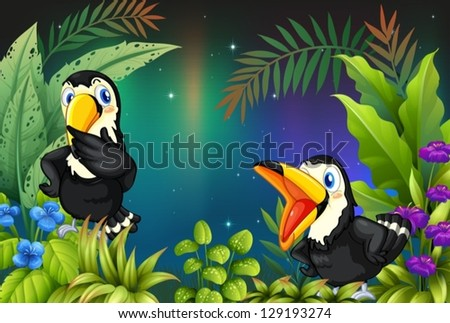 Illustration of two birds at the rainforest - stock vector