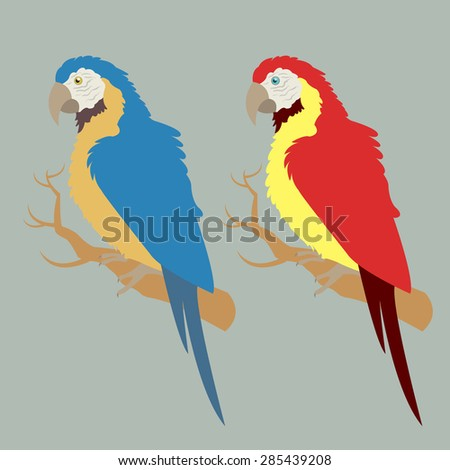 Illustration of two macaw in different colors - stock vector