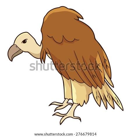 Illustration of vulture - stock vector