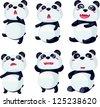 illustration panda - stock vector