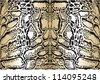 illustration pattern background skins clouded leopard - stock vector