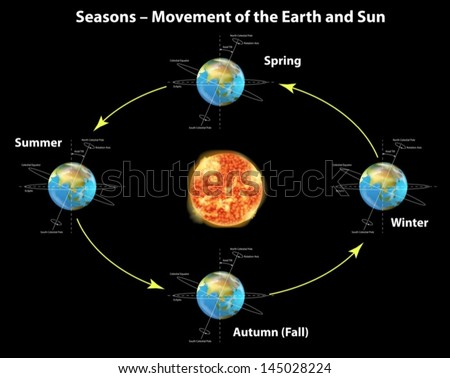 Illustration showing the seasons of the earth - stock vector
