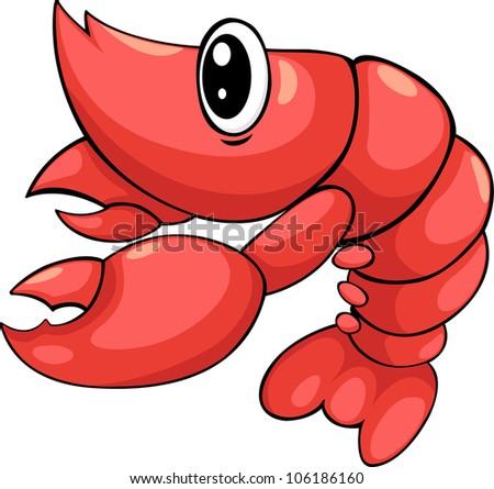 Shrimp Logo Vector Illustration Shrimp Vector