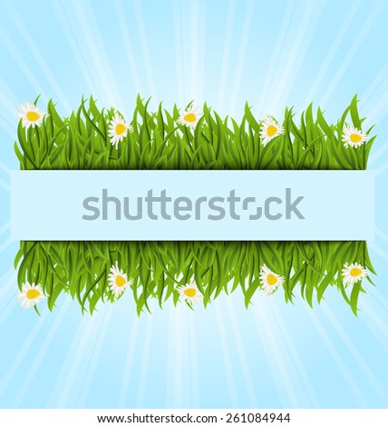 Illustration spring postcard with grass field and flowers chamomiles, copy space for your text - vector - stock vector
