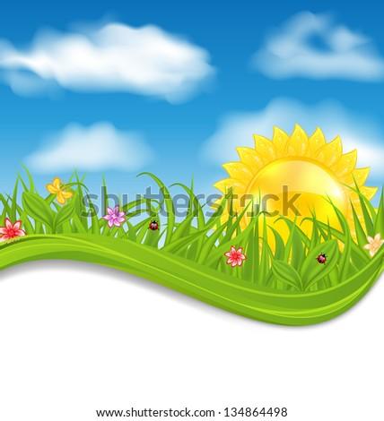 Illustration summer card with sky, cloud, sun, grass, flower, butterfly, ladybug - vector - stock vector