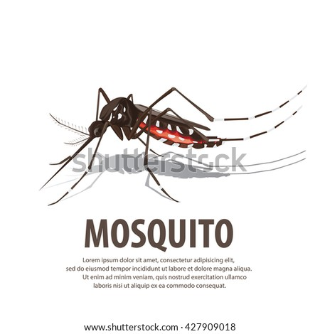 illustration vector. Target on mosquito. Mosquitoes carry many disease such as dengue fever, zika disease,enchaphalitits and else. - stock vector