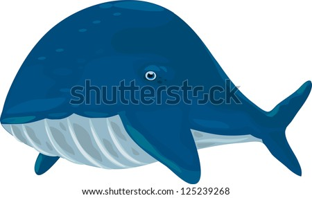 illustration Whale - stock vector
