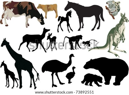 illustration with animal babies and its parents isolated on white background