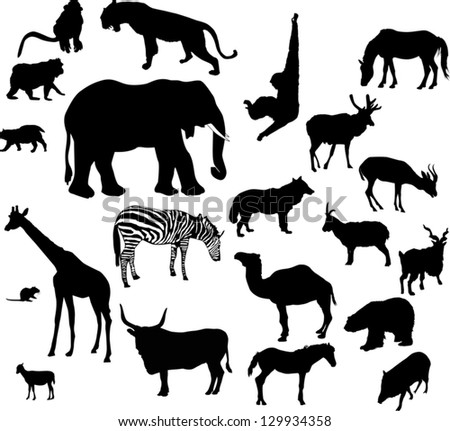 illustration with animal silhouettes collection isolated on white background
