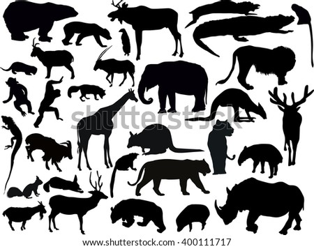 illustration with animals collection isolated on white background