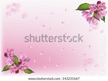 illustration with apple tree flowers and petals