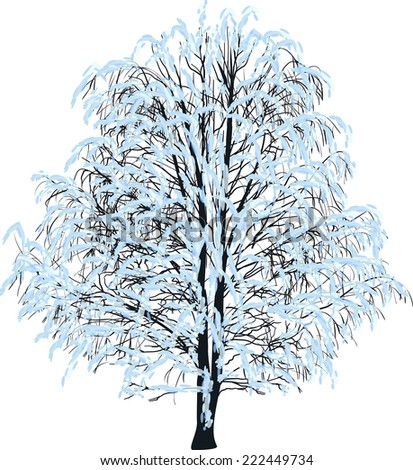 illustration with bare tree in snow isolated on white background