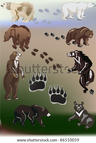 illustration with bears and tracks collection - stock vector