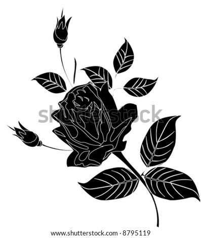 illustration with black and white rose flower
