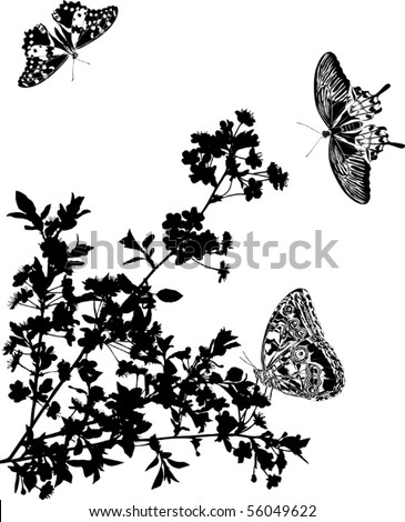 illustration with cherry tree flowers and butterflies silhouette on white background - stock vector