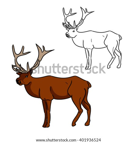 Illustration with deer image and its contour